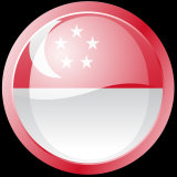 Temporary tattoo of Singapore flag